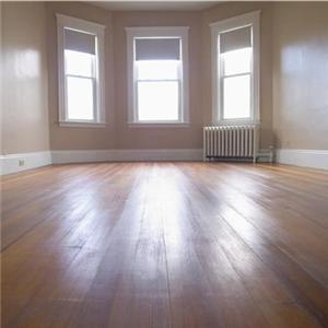 Floor-and-windows_1332_19473791_0_0_7011429_300
